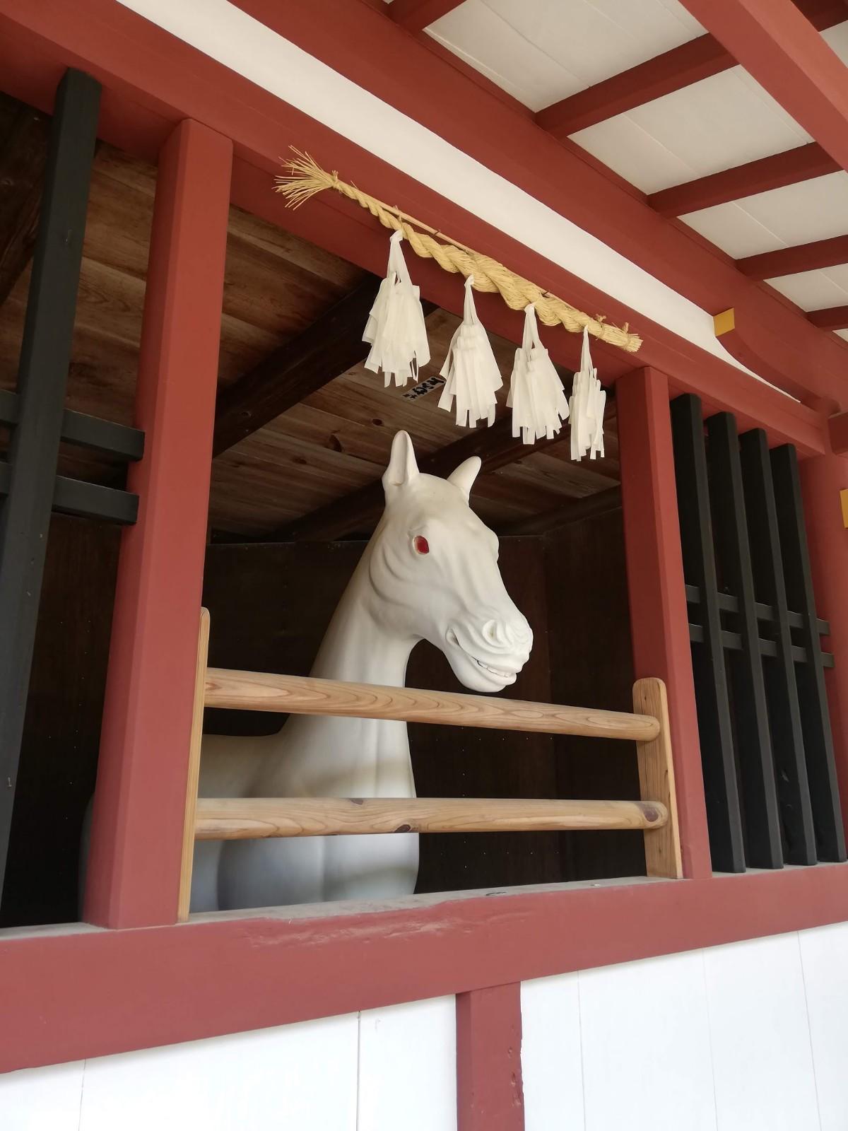 謎の馬の写真